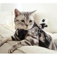 Купить Крепление  YI Pet  для питомцев  для Экшн Камеры Xiaomi YI